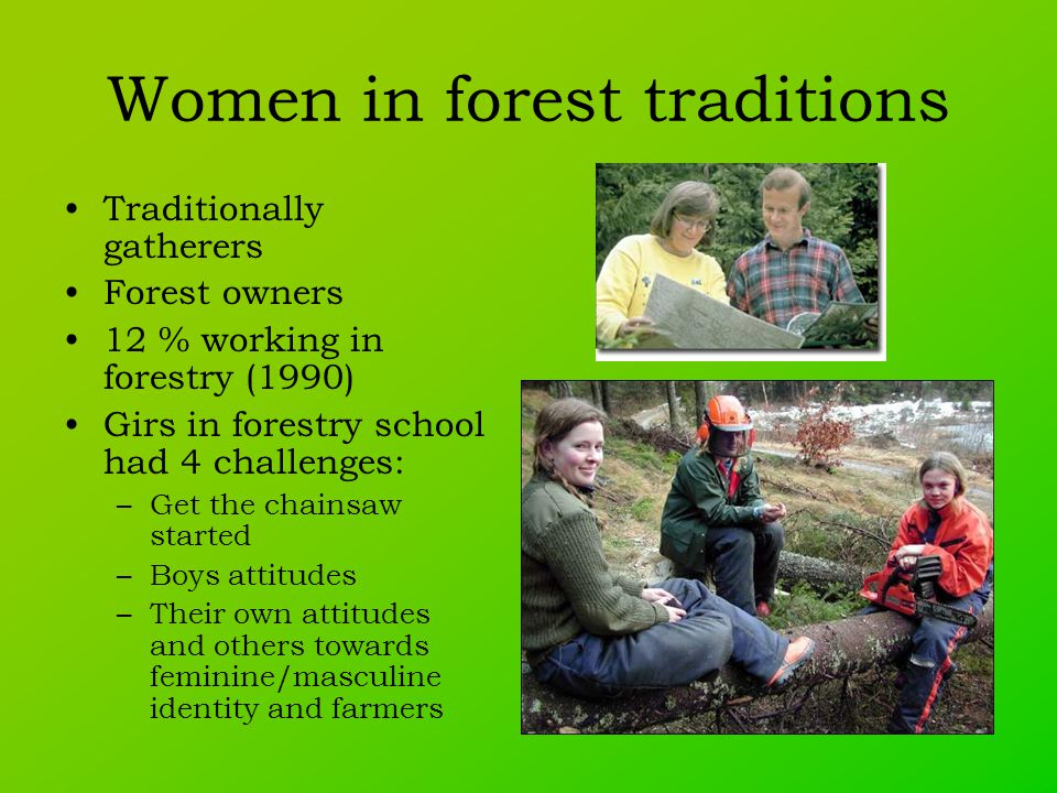 Women in forest traditions Traditionally gatherers Forest owners 12 % working in forestry (1990) Girs in forestry school had 4 challenges: –Get the chainsaw started –Boys attitudes –Their own attitudes and others towards feminine/masculine identity and farmers