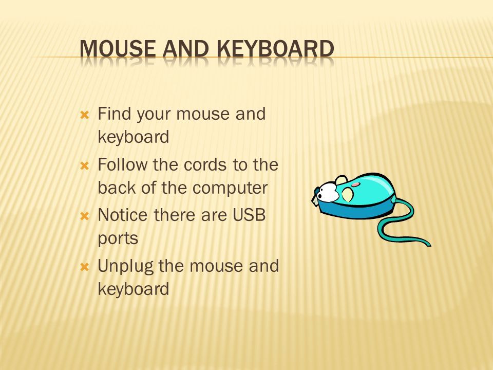  Find your mouse and keyboard  Follow the cords to the back of the computer  Notice there are USB ports  Unplug the mouse and keyboard