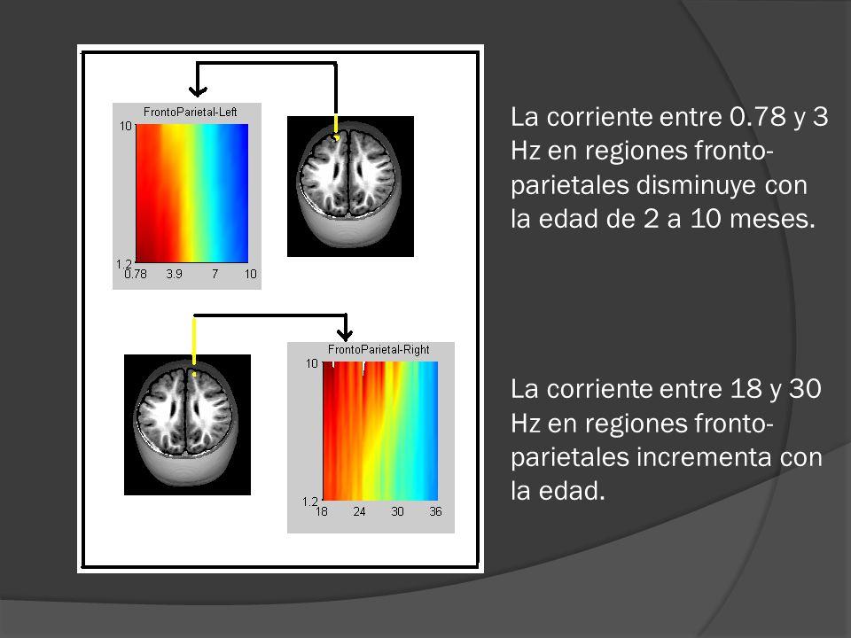 La corriente entre 0.78 y 3 Hz en regiones fronto- parietales disminuye con la edad de 2 a 10 meses.