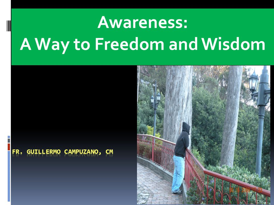 Awareness: A Way to Freedom and Wisdom DePaul Center 8009