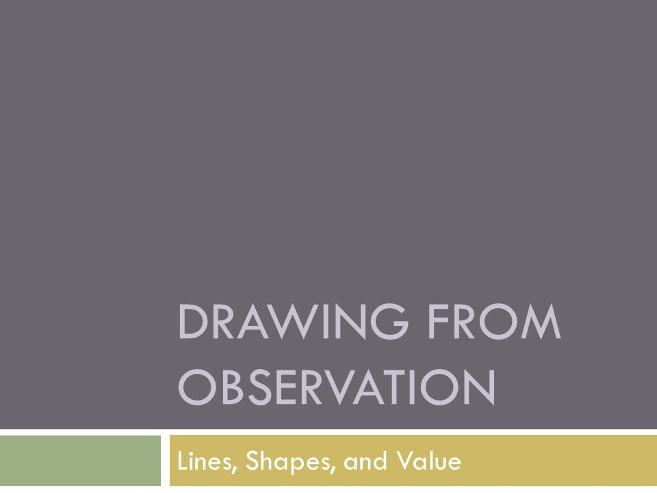 DRAWING FROM OBSERVATION Lines, Shapes, and Value