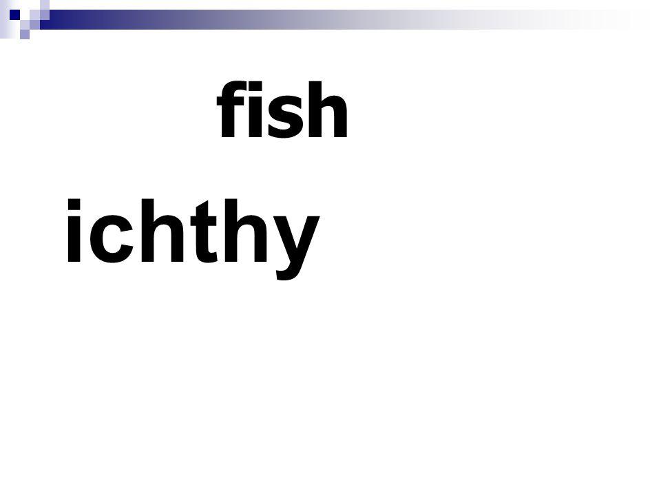 fish ichthy