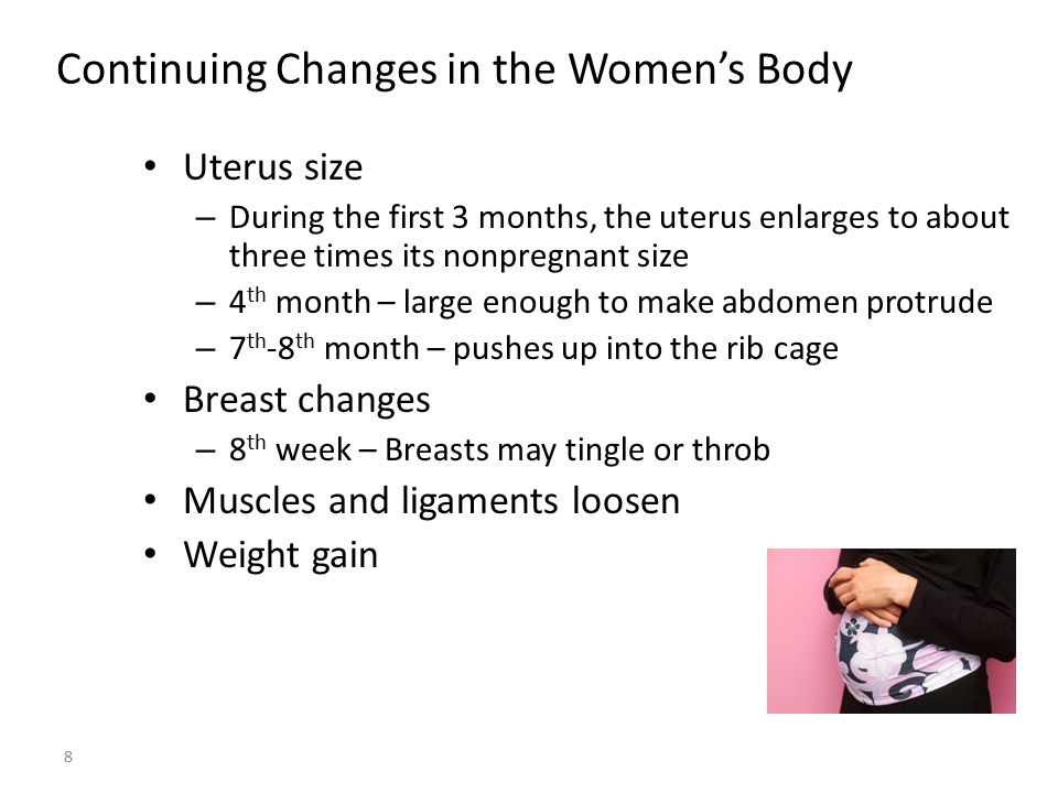 Continuing Changes in the Women's Body Uterus size – During the first 3 months, the uterus enlarges to about three times its nonpregnant size – 4 th m