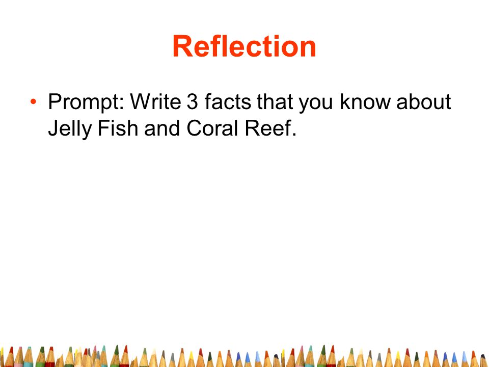 Reflection Prompt: Write 3 facts that you know about Jelly Fish and Coral Reef.