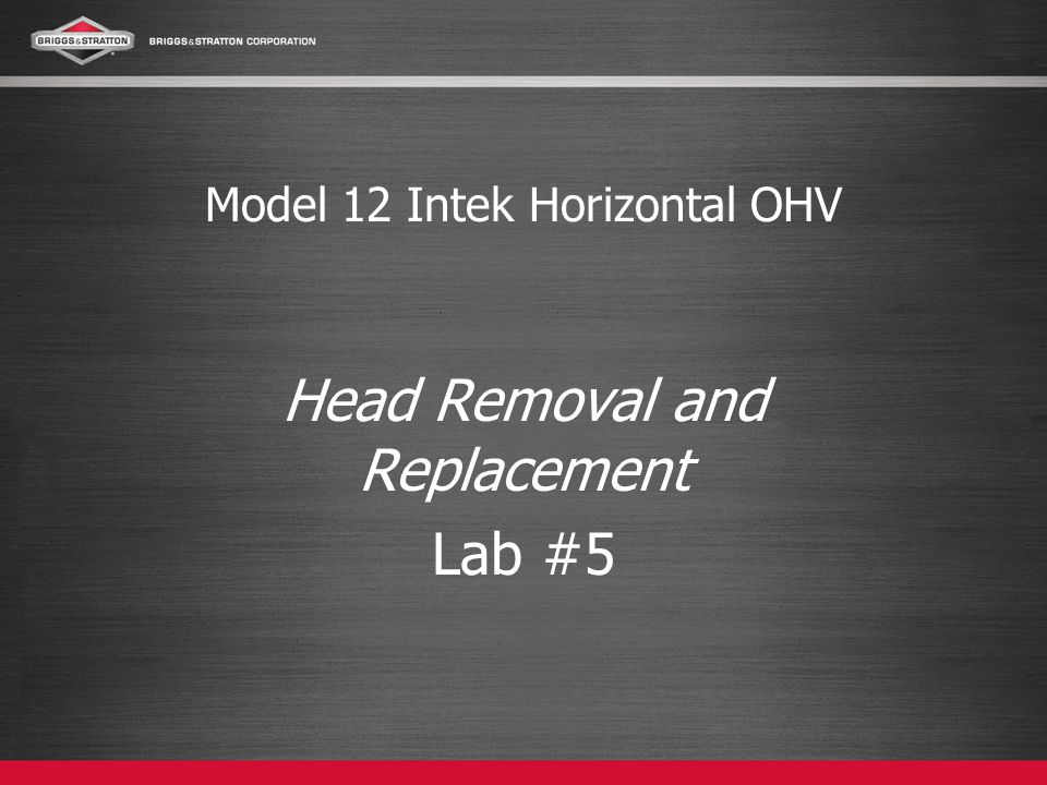 Model 12 Intek Horizontal OHV Head Removal and Replacement Lab #5