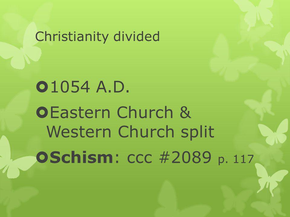 Christianity divided  1054 A.D.  Eastern Church & Western Church split  Schism: ccc #2089 p. 117