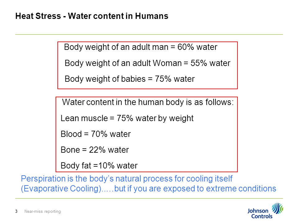 Near-miss reporting3 Heat Stress - Water content in Humans Body weight of an adult man = 60% water Body weight of an adult Woman = 55% water Body weight of babies = 75% water Perspiration is the body's natural process for cooling itself (Evaporative Cooling)..…but if you are exposed to extreme conditions Water content in the human body is as follows: Lean muscle = 75% water by weight Blood = 70% water Bone = 22% water Body fat =10% water