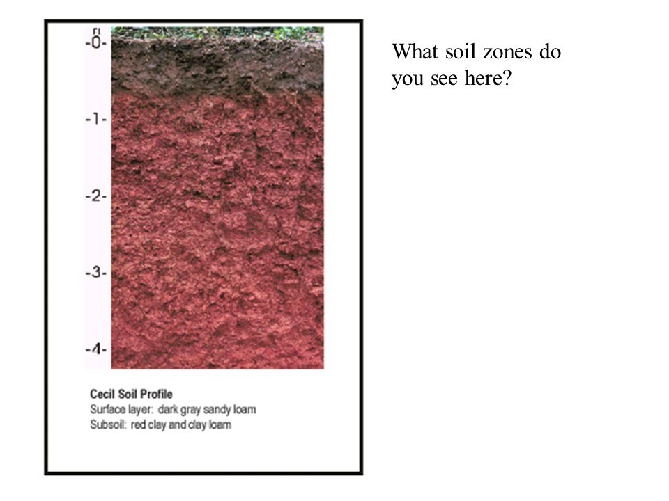 http://soils.usda.gov/education/resources/ O – Organic Horizon A- Zone of leaching B – Zone of Accumulation C – Broken-up bedrock R – Regolith – hard bedrock (not soil) See Fig.