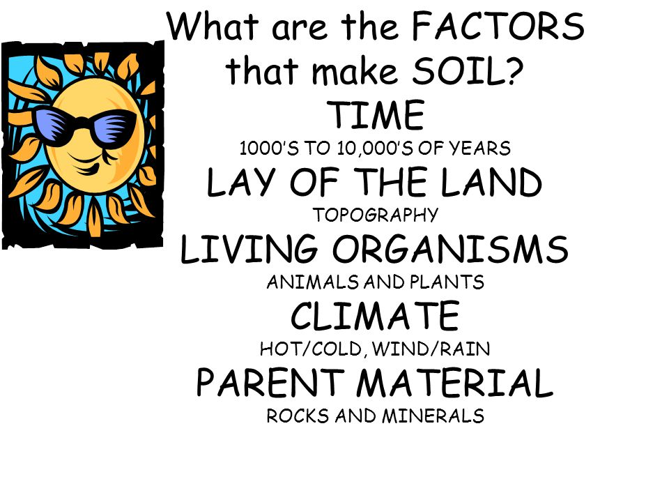 Where does soil come from? Rocks Minerals Organic Matter