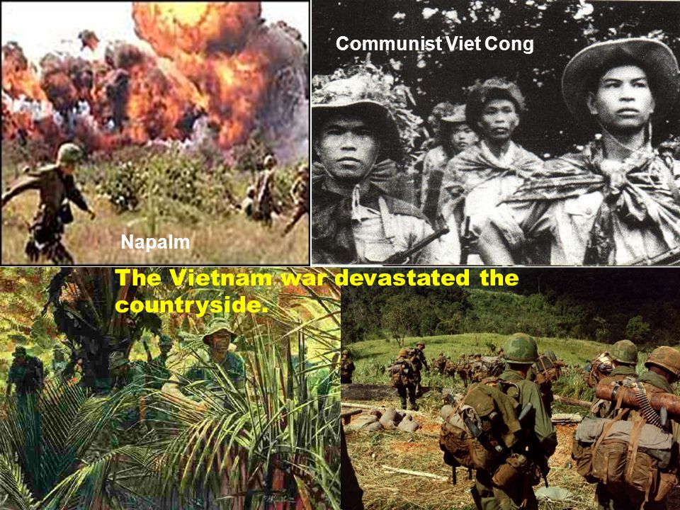 The Vietnam war devastated the countryside. Napalm Communist Viet Cong