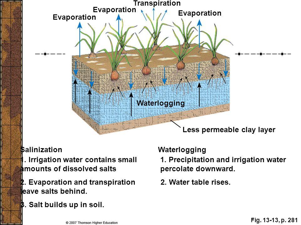 Fig. 13-13, p. 281 Evaporation Transpiration Evaporation Waterlogging Salinization Waterlogging 1. Irrigation water contains small amounts of dissolve