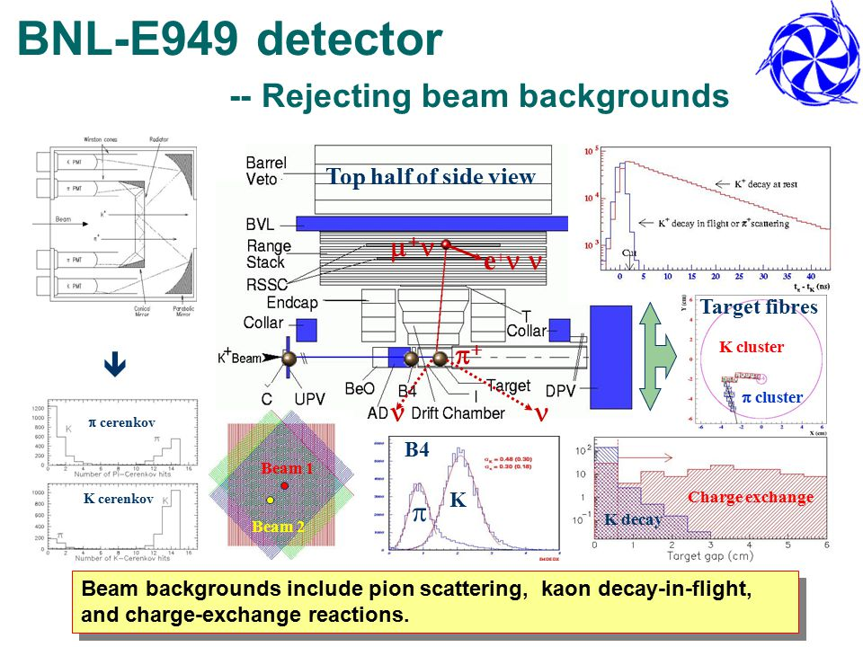 BNL-E949 detector -- Rejecting beam backgrounds    e+e+ Beam backgrounds include pion scattering, kaon decay-in-flight, and charge-exchange reactions.