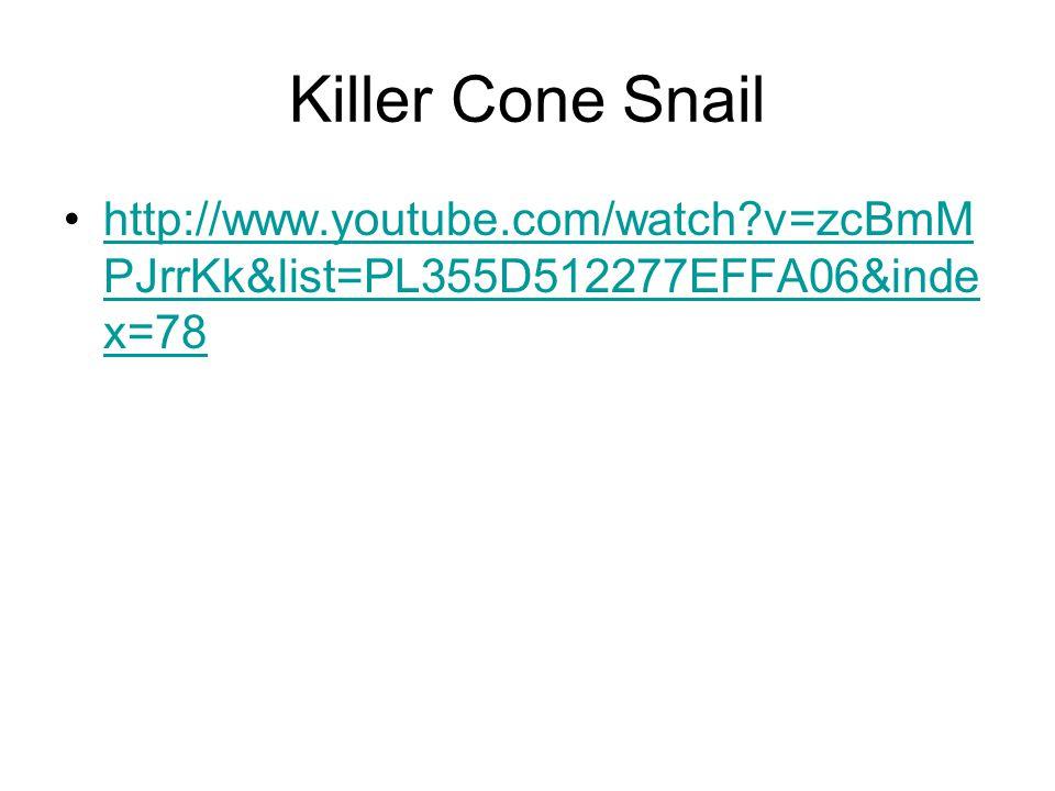 Killer Cone Snail http://www.youtube.com/watch v=zcBmM PJrrKk&list=PL355D512277EFFA06&inde x=78http://www.youtube.com/watch v=zcBmM PJrrKk&list=PL355D512277EFFA06&inde x=78