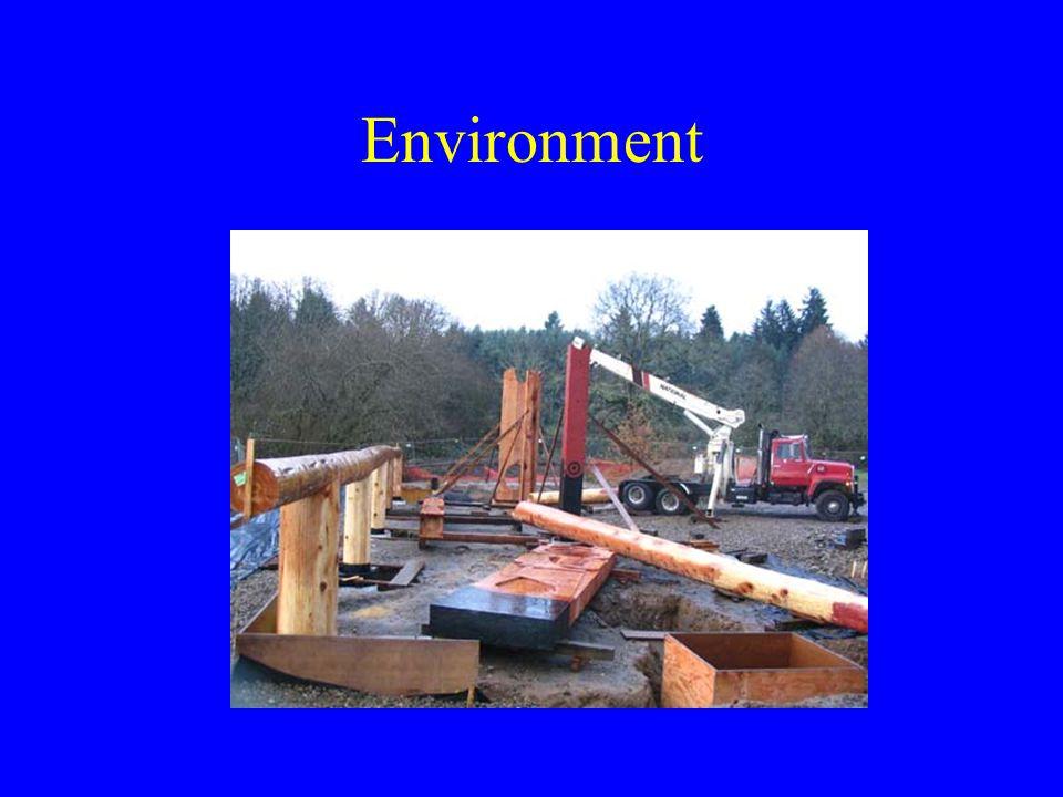 Environment Physical –Lighting –Temperature Chemical –vapors –smoke Biological –Bacteria –Reptiles