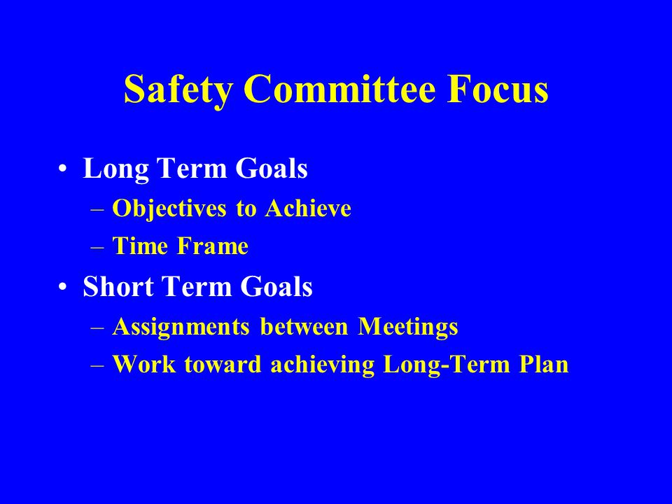 Safety Committee Policy Statement A written and publicized statement is an effective means of providing guidance and demonstrating commitment
