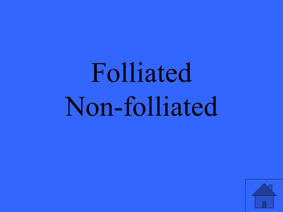 Folliated Non-folliated