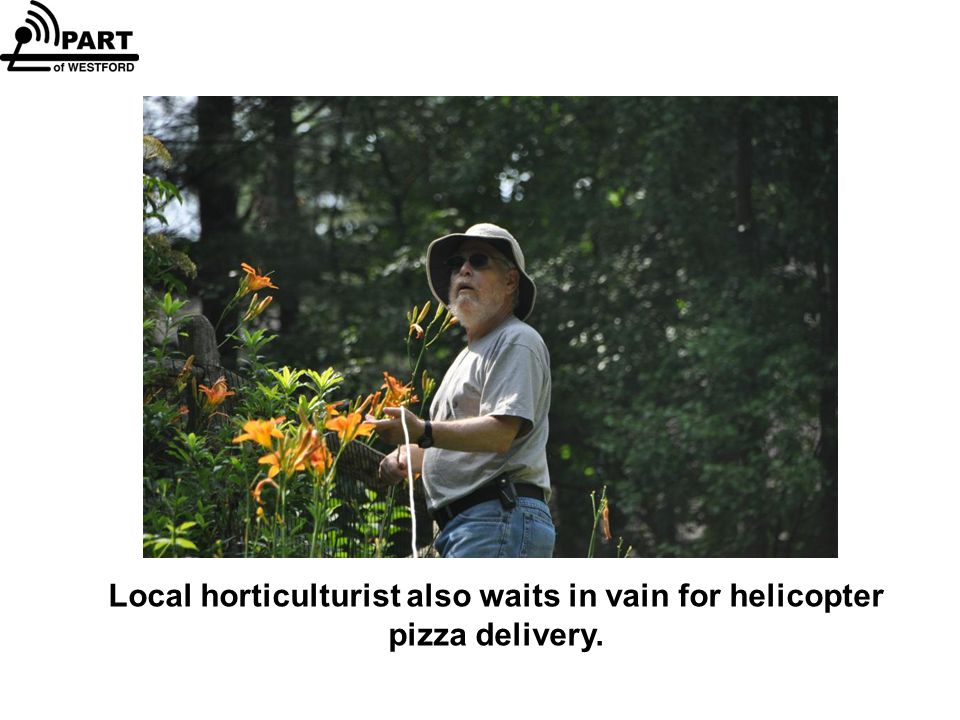 Local horticulturist also waits in vain for helicopter pizza delivery.