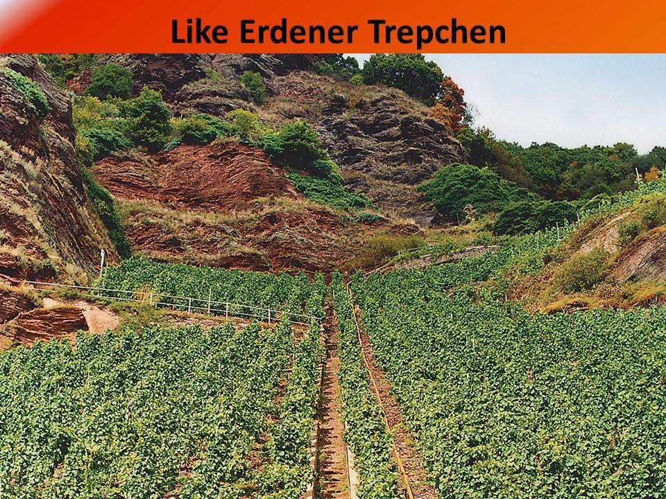 Like Erdener Trepchen