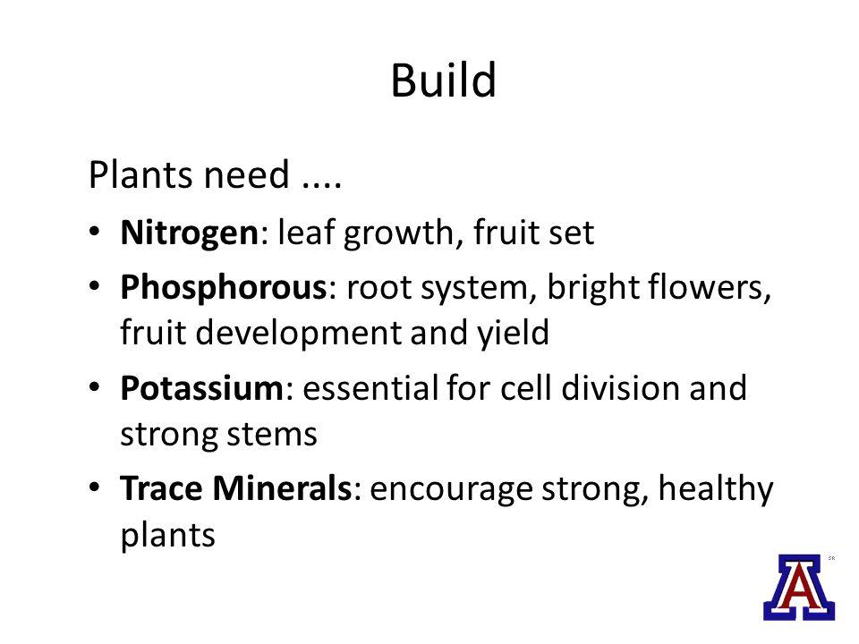 Build Plants need....