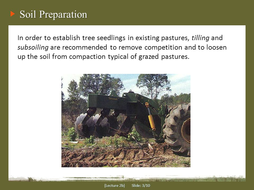 Subsoiling and Disking A single-shank sub-soiler (see photo) that can rip to a depth of 18-24 inches is sufficient to provide water infiltration and space for new seedling roots to establish.