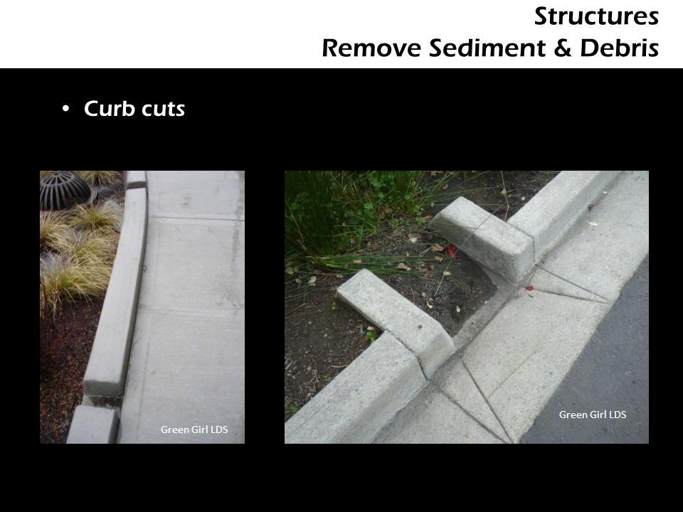 Structures Remove Sediment & Debris Curb cuts Green Girl LDS
