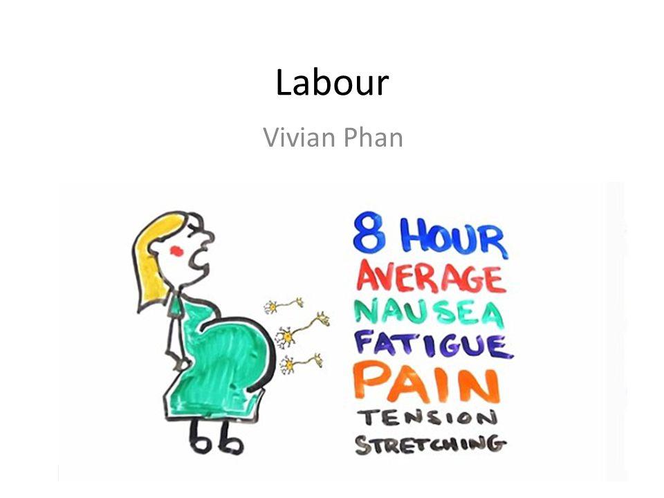 Labour Vivian Phan