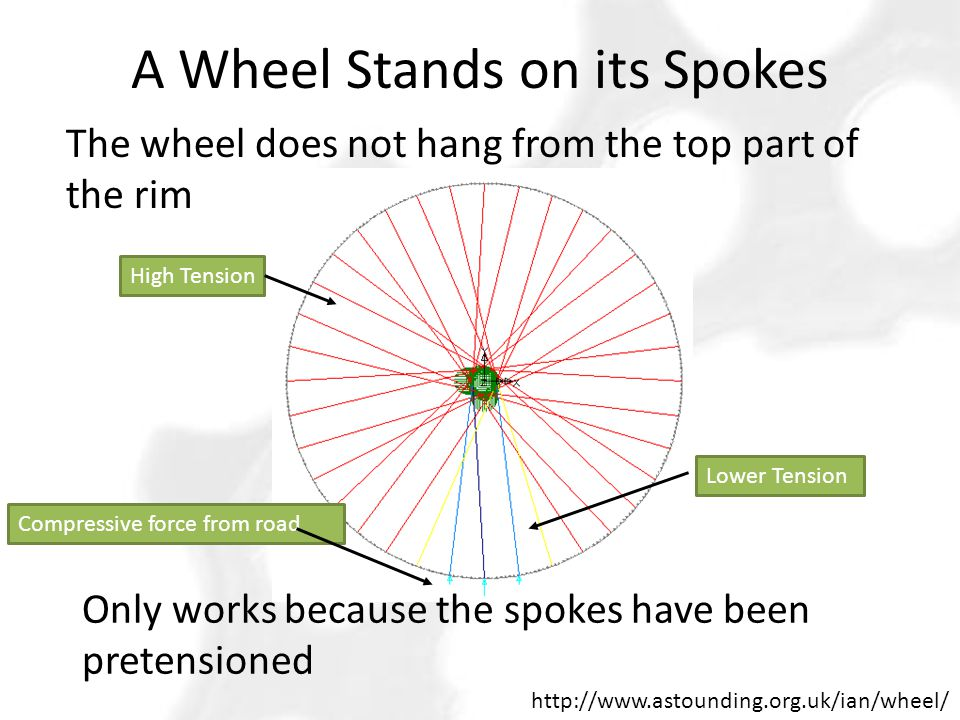 A Wheel Stands on its Spokes http://www.astounding.org.uk/ian/wheel/ Only works because the spokes have been pretensioned The wheel does not hang from the top part of the rim High Tension Lower Tension Compressive force from road