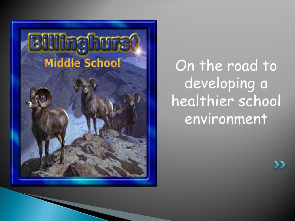 On the road to developing a healthier school environment