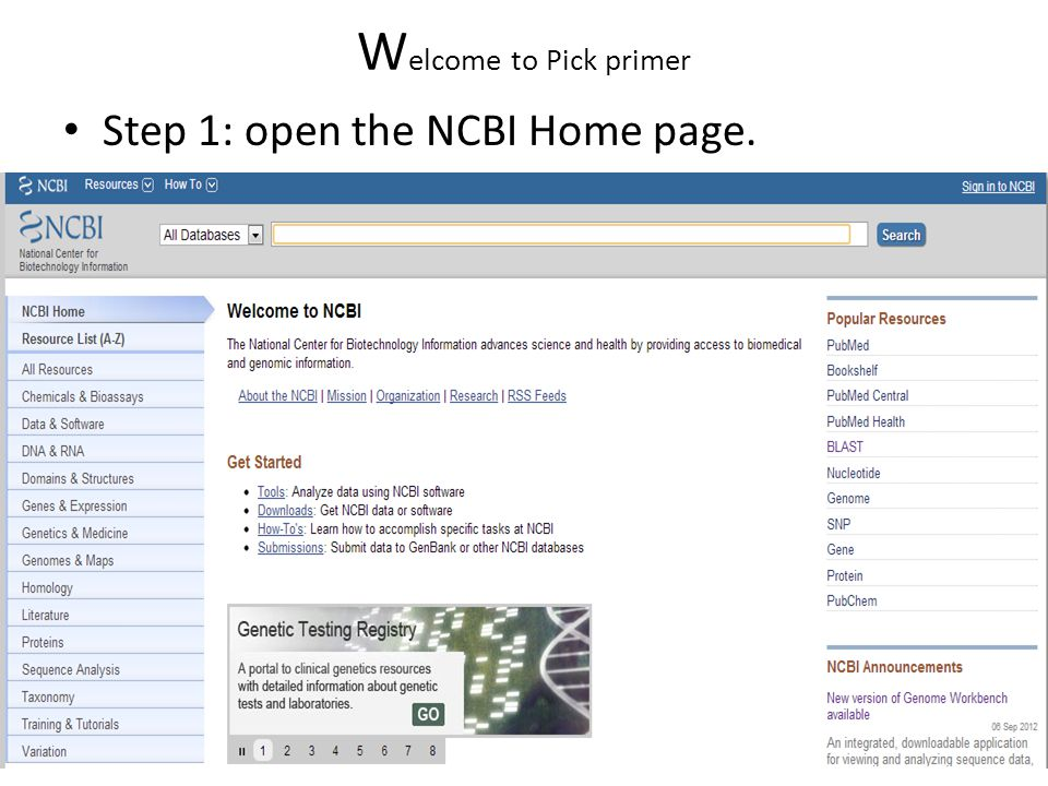 W elcome to Pick primer Step 1: open the NCBI Home page.