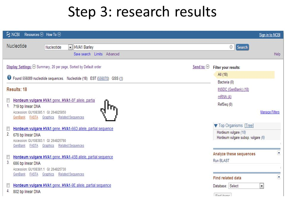 Step 4: The GenBank Format