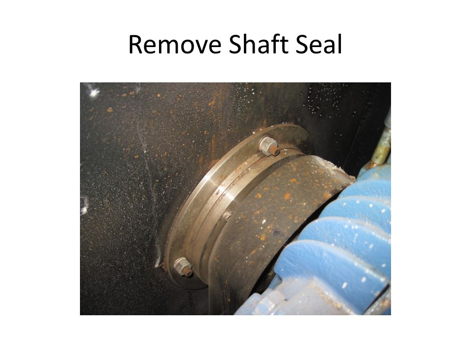 Remove Shaft Seal