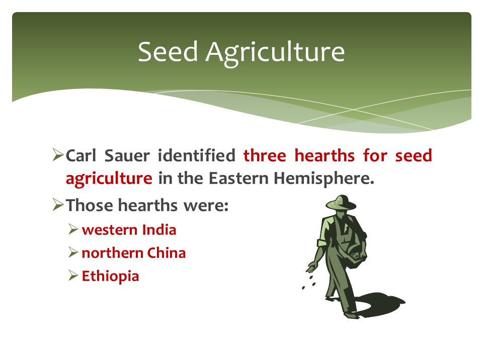  Hearths of crops:  Southwest Asia: barley and cattle  Ethiopia: millet and sorghum Seed Agriculture