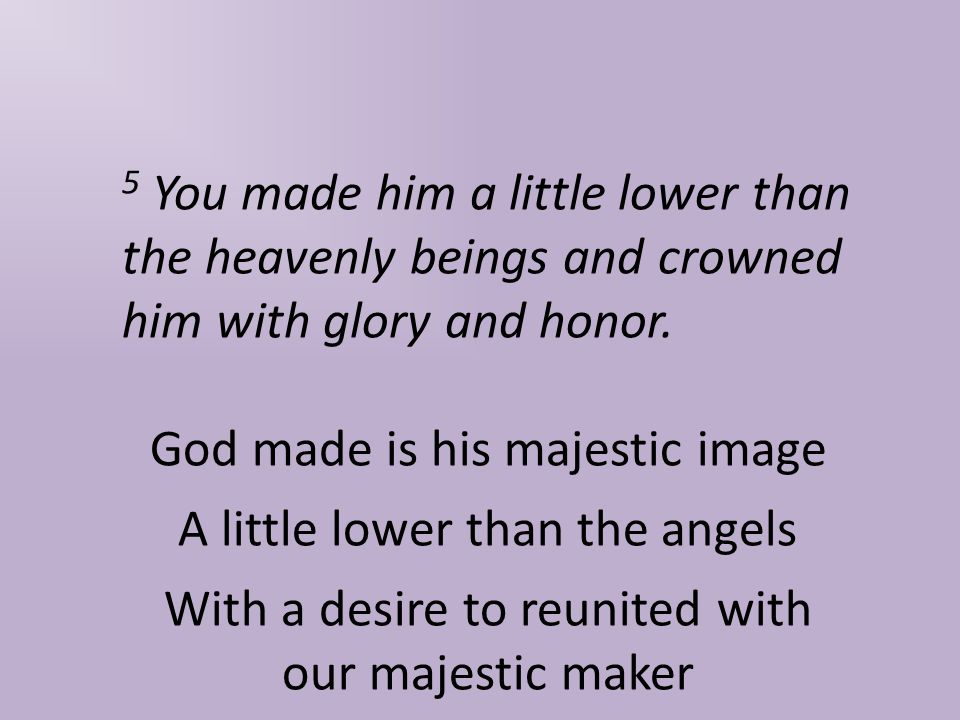 5 You made him a little lower than the heavenly beings and crowned him with glory and honor.