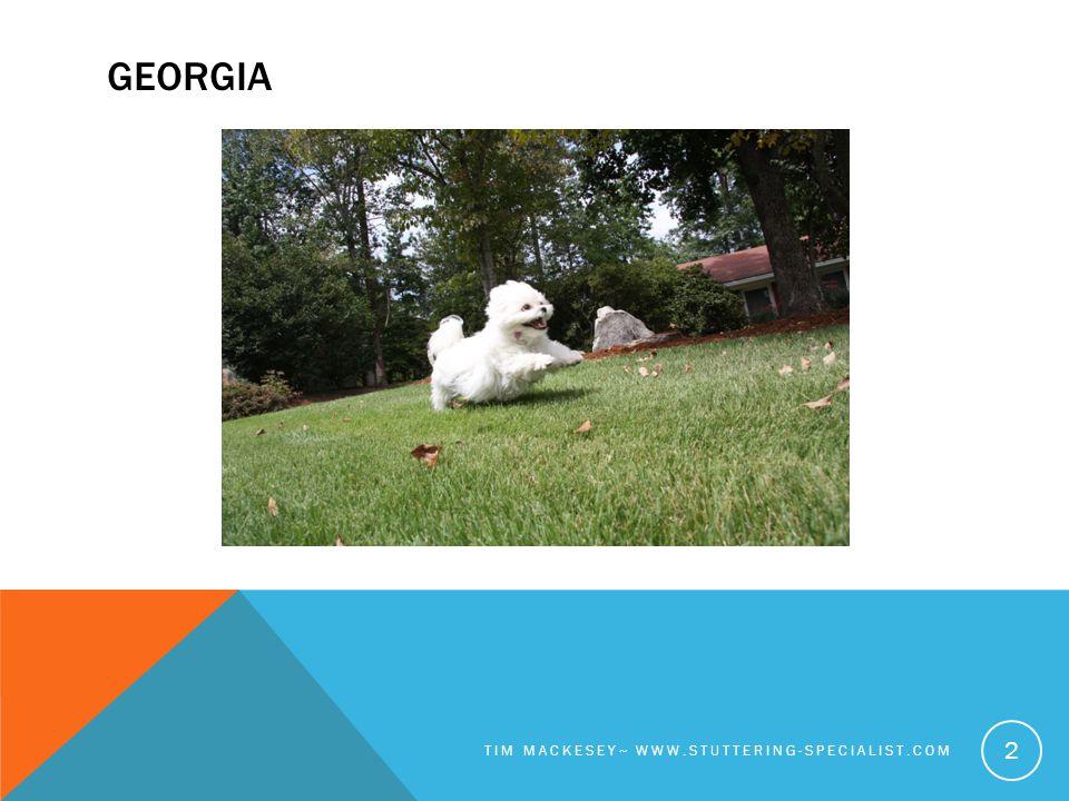 GEORGIA TIM MACKESEY~ WWW.STUTTERING-SPECIALIST.COM 2