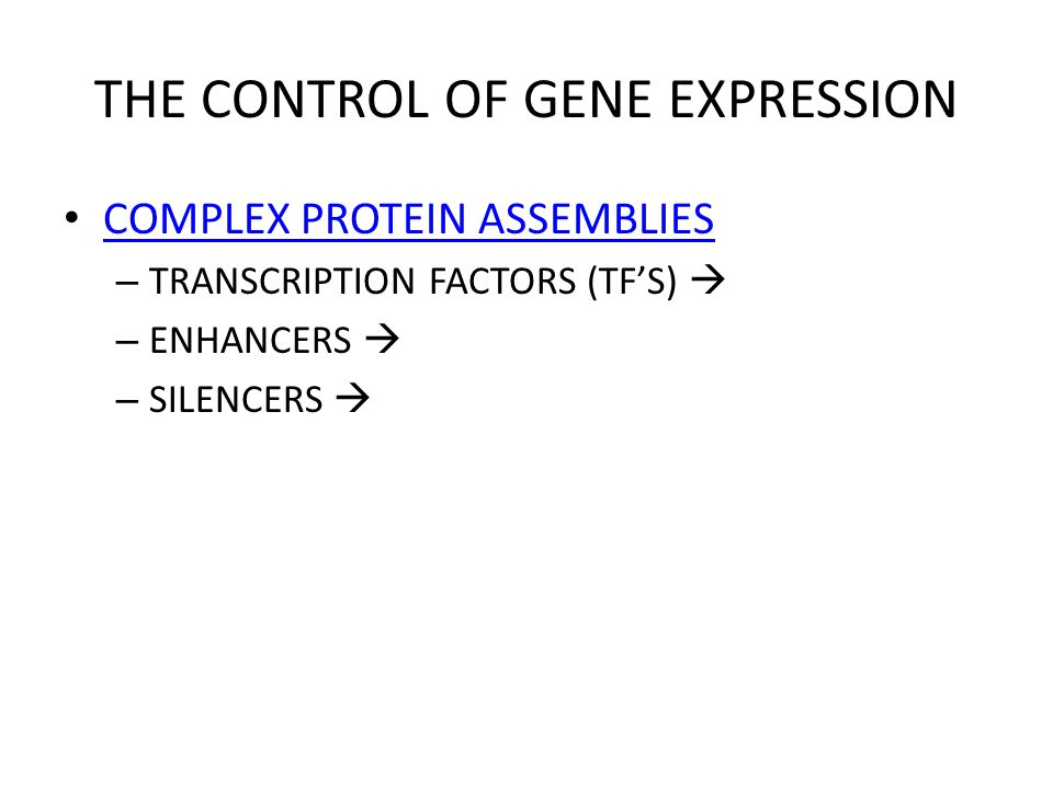 THE CONTROL OF GENE EXPRESSION COMPLEX PROTEIN ASSEMBLIES – TRANSCRIPTION FACTORS (TF'S)  – ENHANCERS  – SILENCERS 