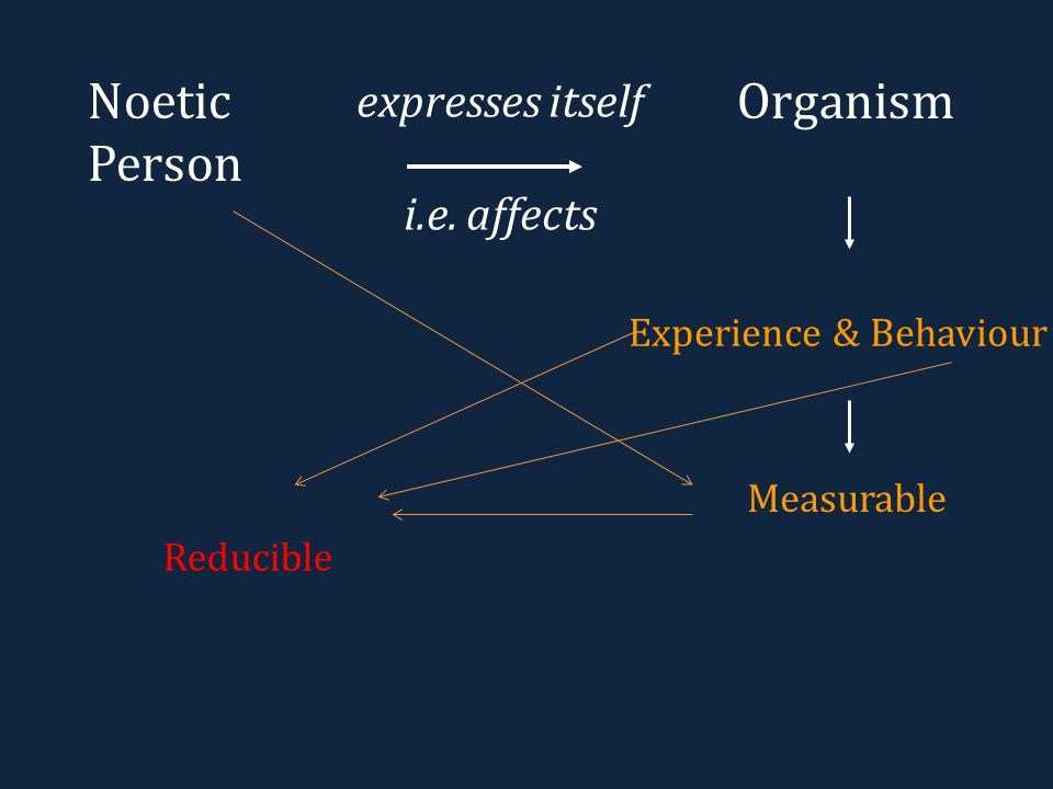OrganismNoetic Person expresses itself i.e. affects Experience & Behaviour Measurable Reducible