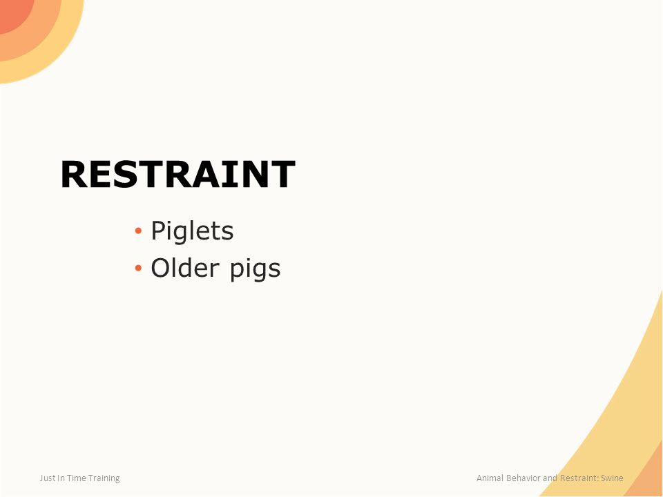 RESTRAINT Piglets Older pigs Just In Time Training Animal Behavior and Restraint: Swine
