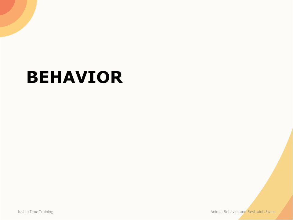 BEHAVIOR Just In Time Training Animal Behavior and Restraint: Swine