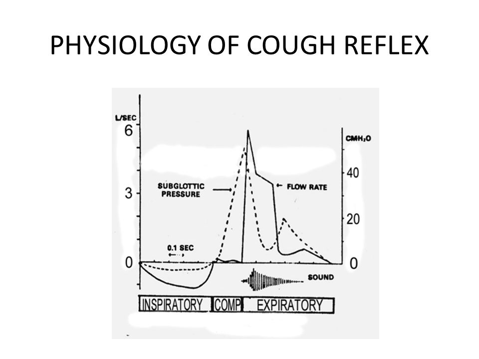 PHYSIOLOGY OF COUGH REFLEX