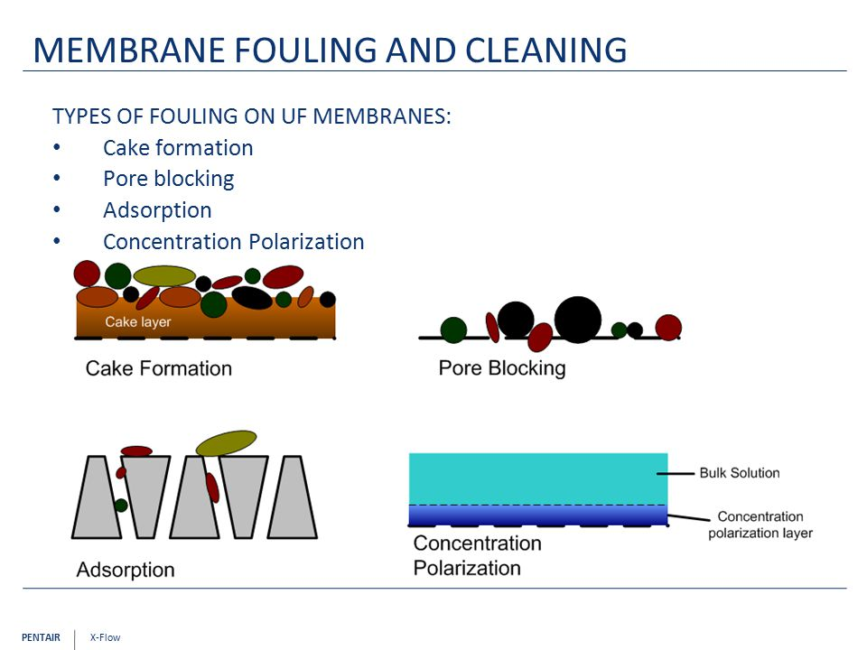 PENTAIR X-Flow MEMBRANE FOULING AND CLEANING TYPES OF FOULING ON UF MEMBRANES: Cake formation Pore blocking Adsorption Concentration Polarization