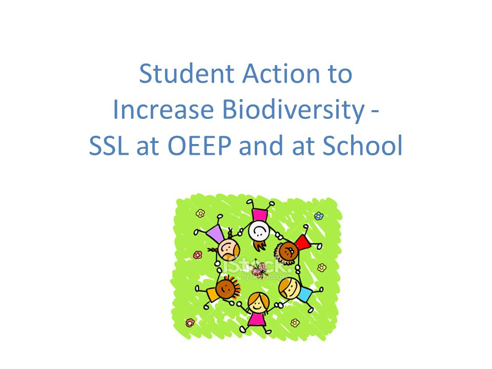 Student Action to Increase Biodiversity - SSL at OEEP and at School