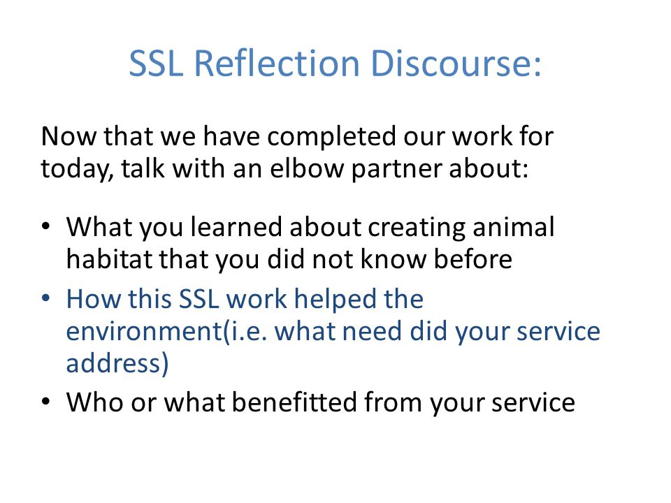 SSL Reflection Discourse: Now that we have completed our work for today, talk with an elbow partner about: What you learned about creating animal habitat that you did not know before How this SSL work helped the environment(i.e.