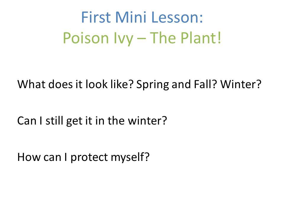 Nonnative Invasive Plant Removal: Background What is a nonnative invasive plant.
