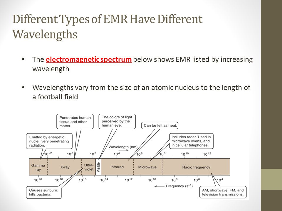 Different Types of EMR Have Different Wavelengths The electromagnetic spectrum below shows EMR listed by increasing wavelength Wavelengths vary from t