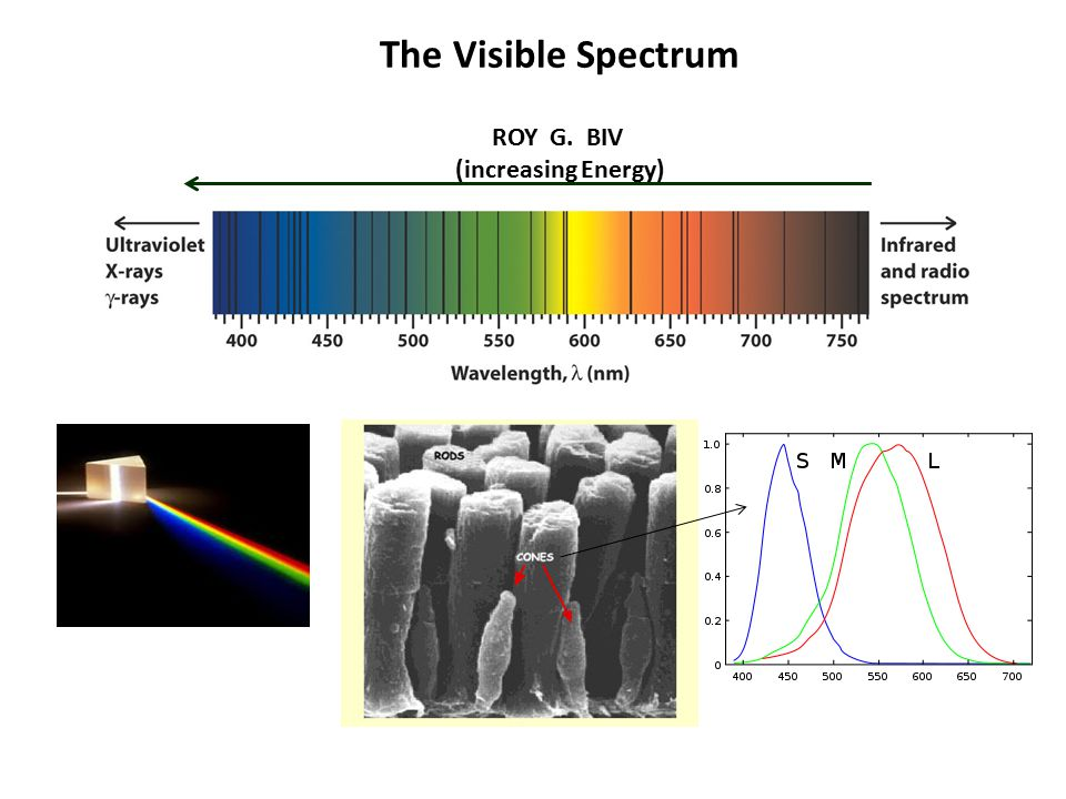 Examples What is the frequency of orange (~650 nm) light.
