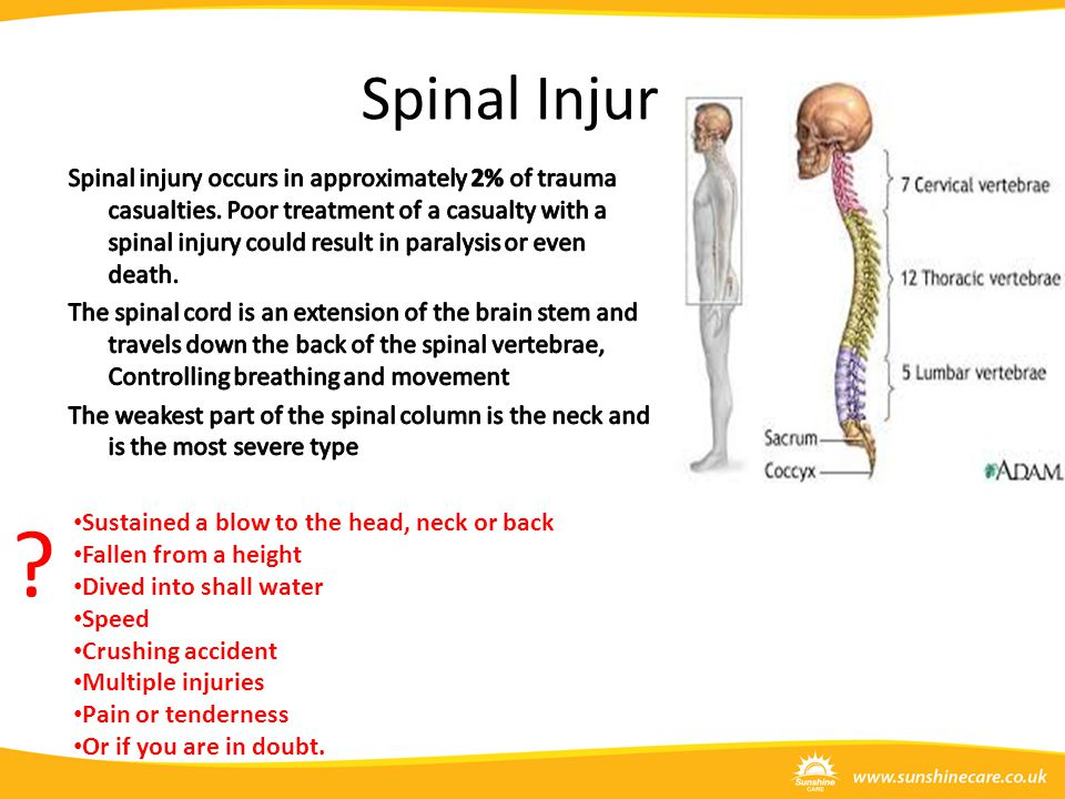 Spinal Injury .