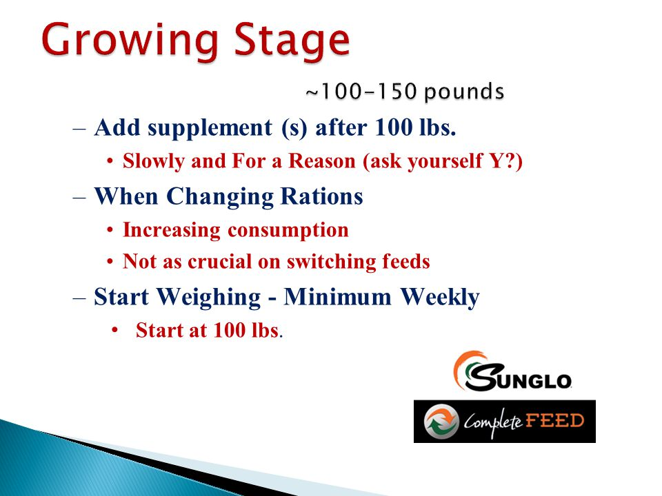 –Add supplement (s) after 100 lbs. Slowly and For a Reason (ask yourself Y?) –When Changing Rations Increasing consumption Not as crucial on switching