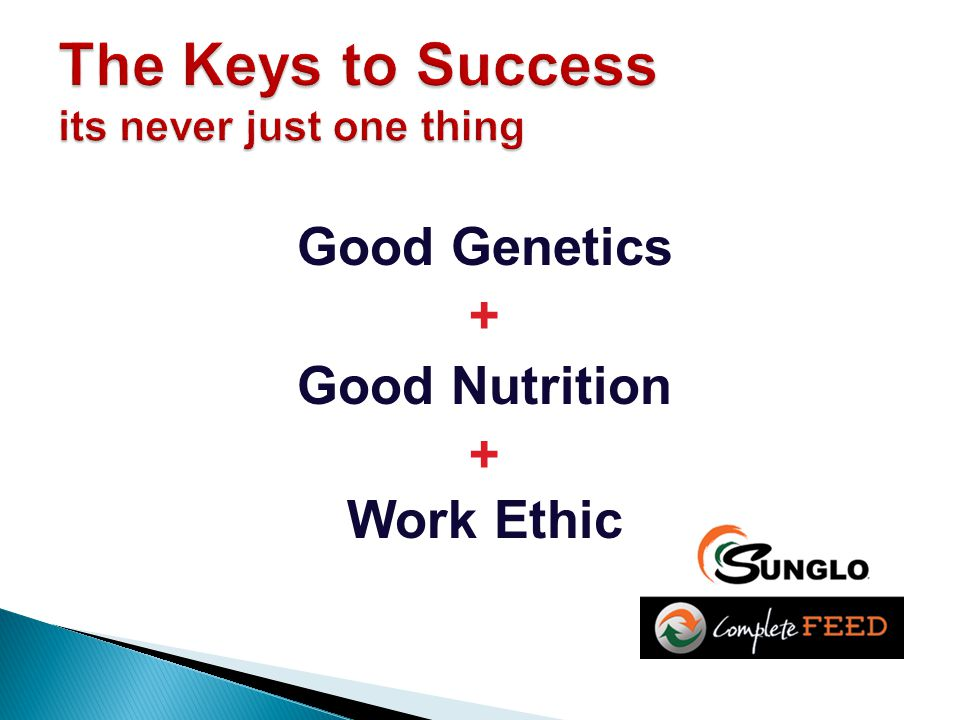 Good Genetics + Good Nutrition + Work Ethic