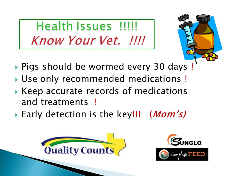 PPigs should be wormed every 30 days . UUse only recommended medications .