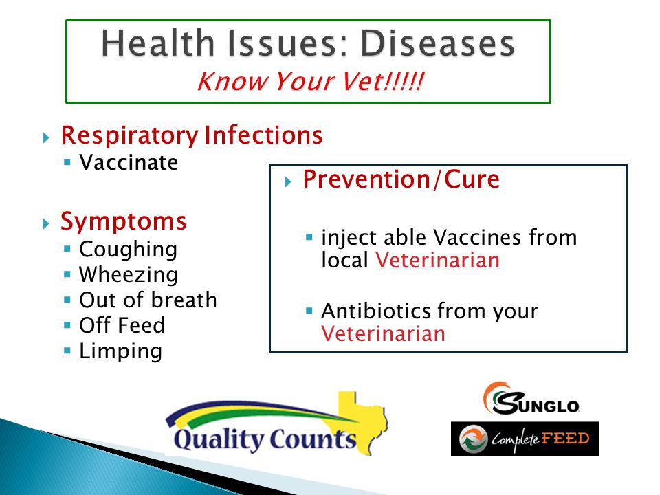 Health Issues: Diseases Know Your Vet!!!!.